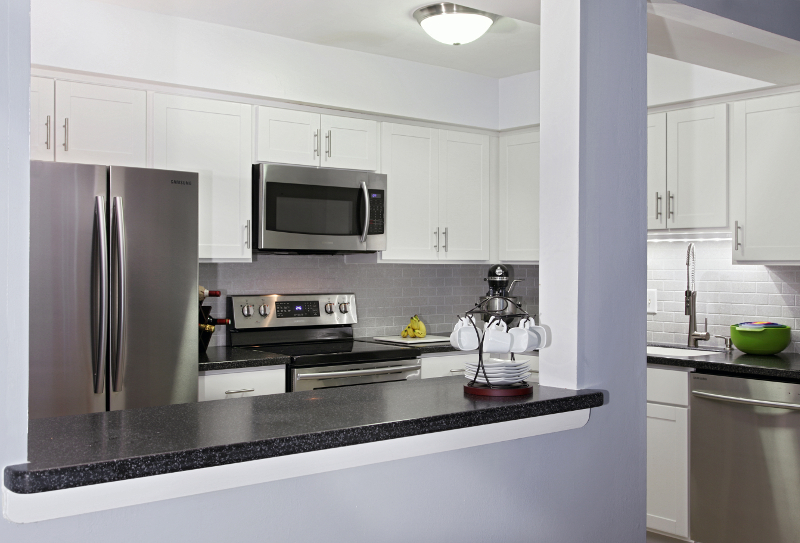 popular frosty white kitchen cabinets